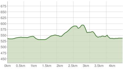Große Bergener Moos Nordic-Walking Runde