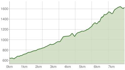 Gipfelweg zum Hochfelln über Bründling-Alm - Kalkofen